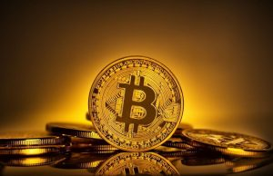 5 Essential Facts You Must Know About Bitcoin Bandwagon