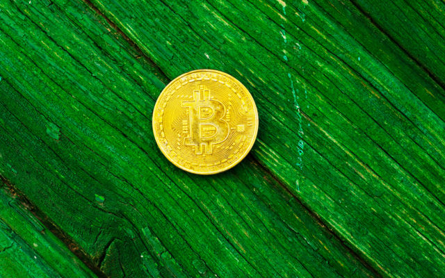bitcoin green tech leaf